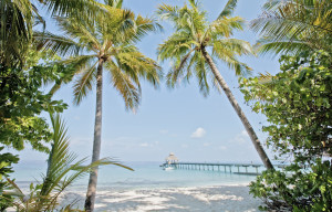 mle-reethi-beach-jetty