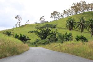 tau-papua-reise-landschaft1
