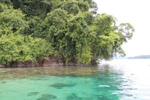tau-papua-reise-tauchen3
