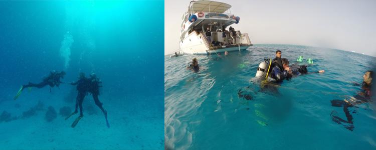 Hinter dem Rescue Diver Kurs  steckt doch auch ein ganzes Stückchen Arbeit dahinter