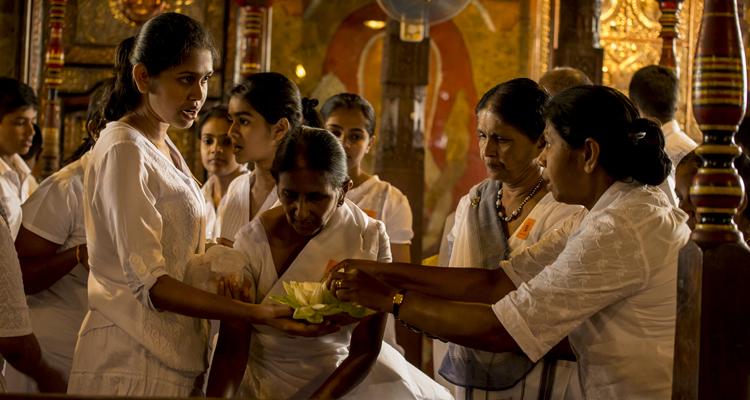 mle-manta3-srilanka-titel3