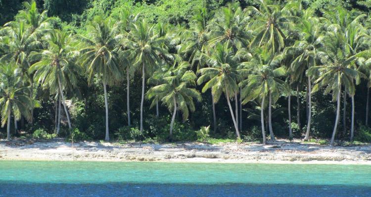 Reisebericht Forgotten Island