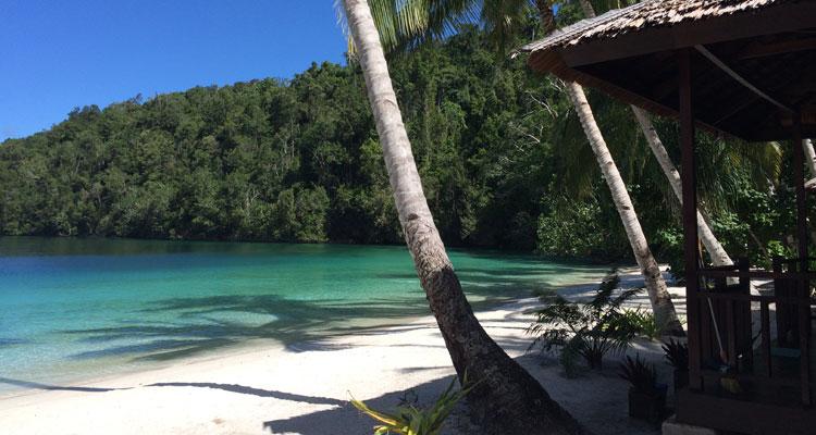 west-papua-andrea-2016-9