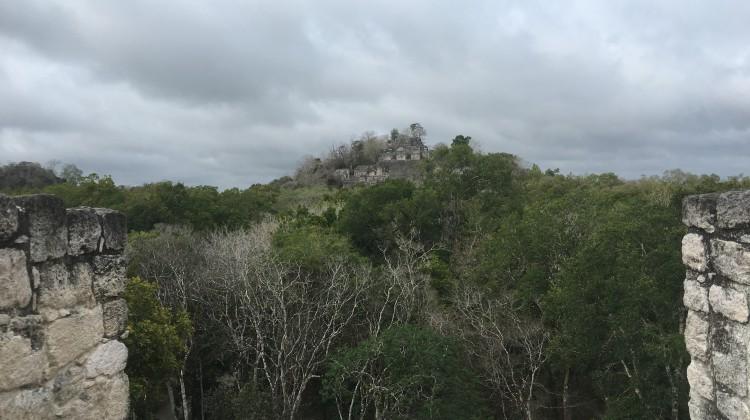 Der Grossteil von Calakmul ist noch nicht ausgegraben