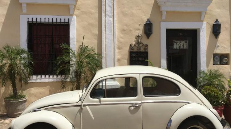 Traditioneller VW-Käfer, immer wieder gern gesehen