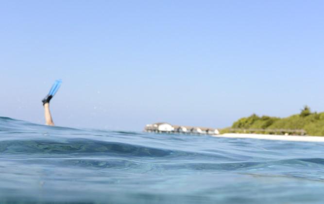 Eintauchen und weg: Dürfen wir dich auf eine Reise in die Malediven mitnehmen?